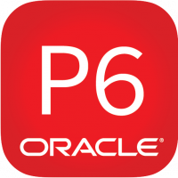 Oracle® Primavera P6 Professional Advanced